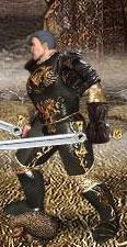 Серый Ежик в бою