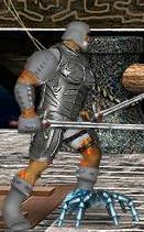 Серый паучок в бою